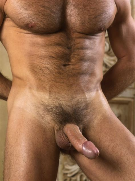 hot hung and hairy jpg 500x667